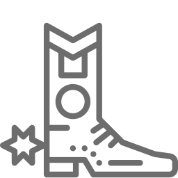 Western Boots Icon