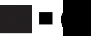 Apple Reebok Logo